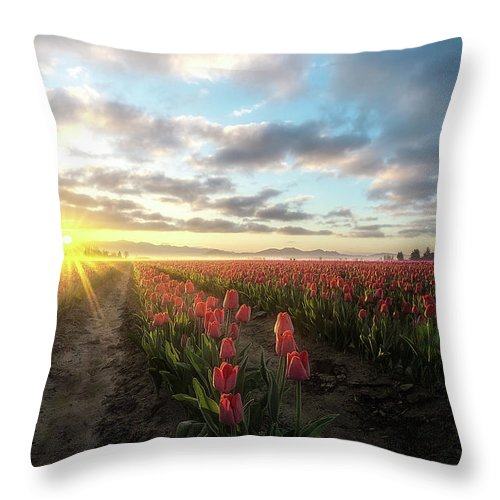Skagit Valley Throw Pillow featuring the photograph The Fallen by Ryan Manuel