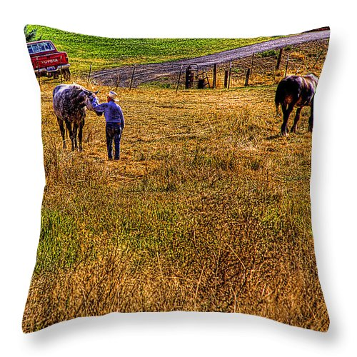 Landscape Throw Pillow featuring the photograph The Farmers Friend by David Patterson