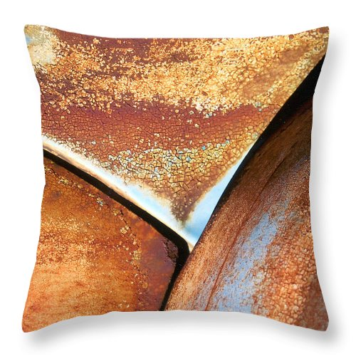 Abstract Throw Pillow featuring the photograph The Feminine Mystique by Steve Karol
