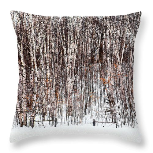 Trees Throw Pillow featuring the photograph The Fence by Linda McRae