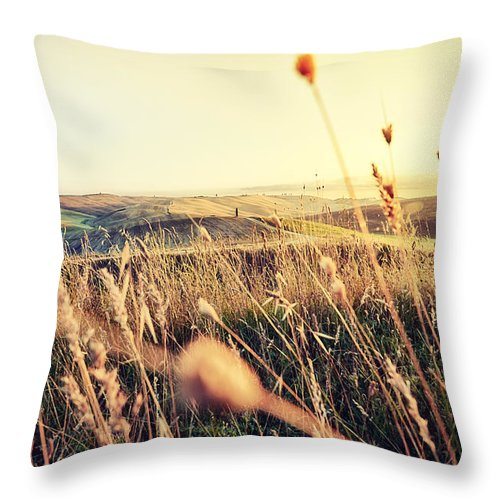 Europe Throw Pillow featuring the photograph The Fertile Soil by Radek Spanninger