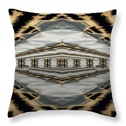 Digital Throw Pillow featuring the photograph The Final Stage by Thomas MacPherson Jr