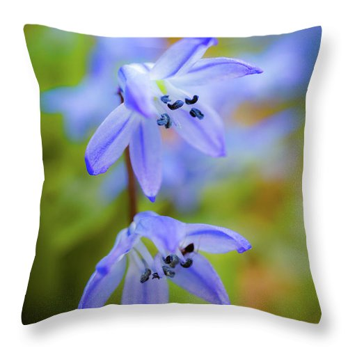 Spring Flowers Throw Pillow featuring the photograph The First Spring Flowers by Lilia D