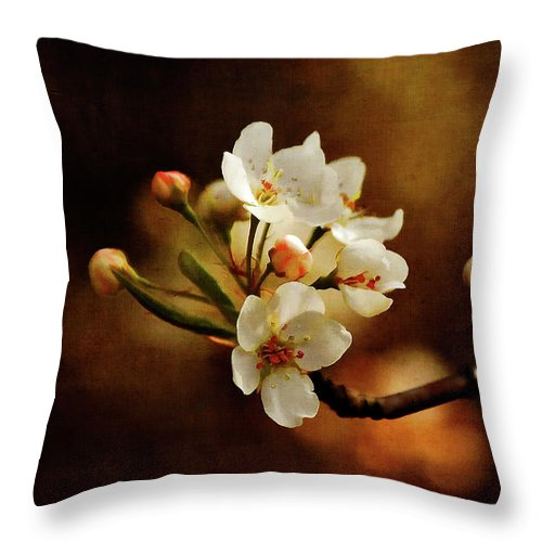 Cherry Trees Throw Pillow featuring the photograph The Fleeting Sweetness Of Spring by Lois Bryan