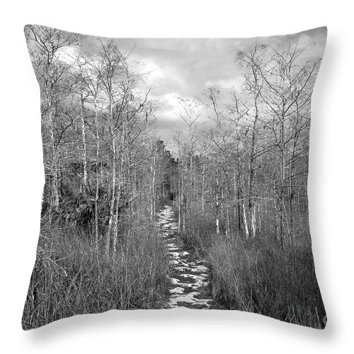 Everglades Throw Pillow featuring the photograph The Florida Trail by David Lee Thompson