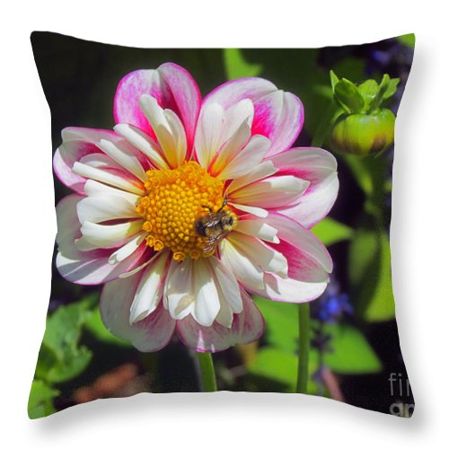 Bumblebee Throw Pillow featuring the photograph The Flower Keeper by Elizabeth Dow