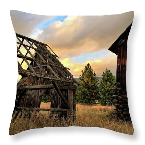 Barn Throw Pillow featuring the photograph The Forgotten Dreams 10 by Victor K