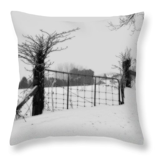 Gate Throw Pillow featuring the photograph The Frozen Gate Black And White by Cathy Beharriell