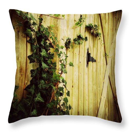 Outside Throw Pillow featuring the photograph The Gate by Tatiana Gorbett