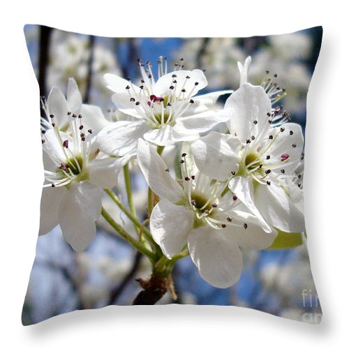 Floral Photography Throw Pillow featuring the photograph The Glory Of Spring by Kathy Bucari