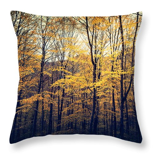 Europe Throw Pillow featuring the photograph The Gold That Glitters by Radek Spanninger