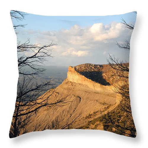 Mesa Throw Pillow featuring the photograph The Great Mesa by David Lee Thompson