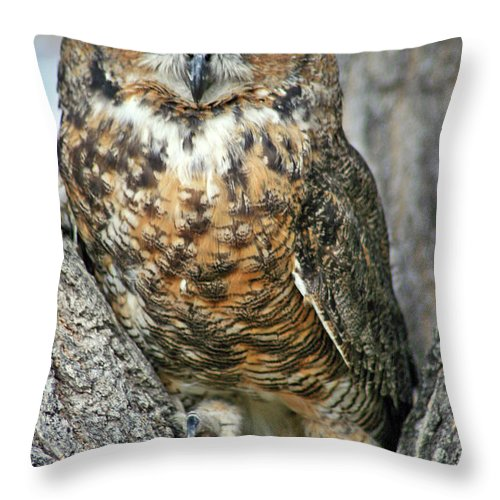 Owl Throw Pillow featuring the photograph The Great by Scott Mahon