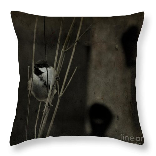 Tit Throw Pillow featuring the photograph The Great Tit by Angel Ciesniarska