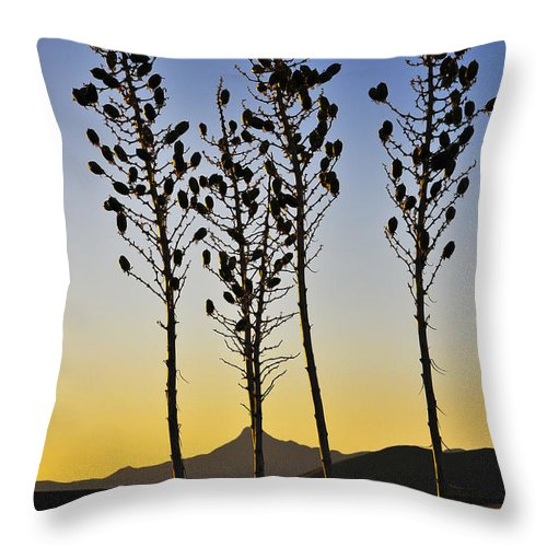 The Guild Throw Pillow featuring the photograph The Guild by Skip Hunt