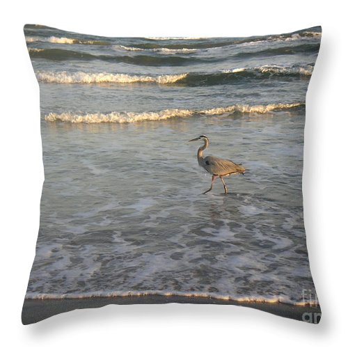 Nature Throw Pillow featuring the photograph The Gulf At Twilight - Going My Way by Lucyna A M Green