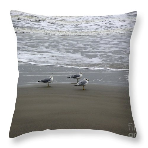 Nature Throw Pillow featuring the photograph The Gulf In Shades Of Gray - Formation by Lucyna A M Green