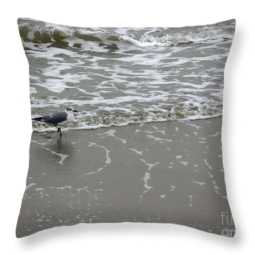 Nature Throw Pillow featuring the photograph The Gulf In Shades Of Gray - On The Edge by Lucyna A M Green