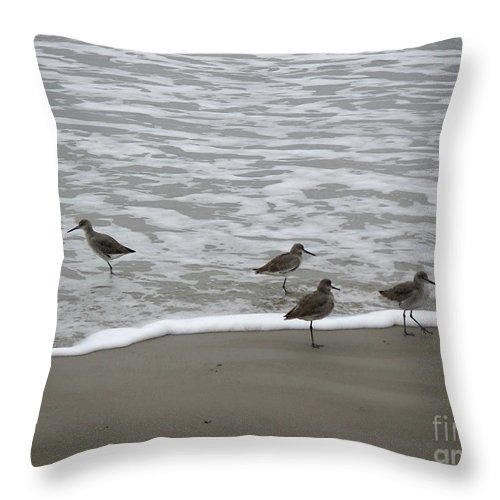 Nature Throw Pillow featuring the photograph The Gulf In Shades Of Gray - One Opposed by Lucyna A M Green