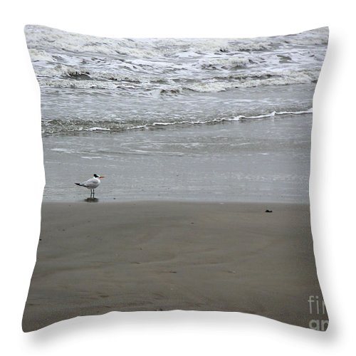 Nature Throw Pillow featuring the photograph The Gulf In Shades Of Gray - Seaing by Lucyna A M Green