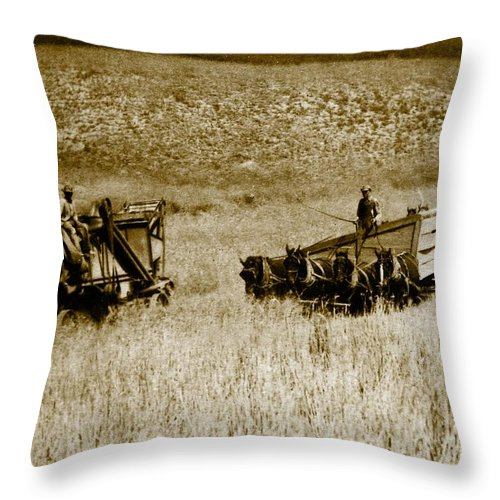 Farmers Throw Pillow featuring the photograph The Harvest by Randi Seaman