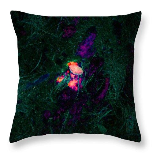 Mushroom Throw Pillow featuring the digital art The Heart Of The Matter by Donjoe Mitchell