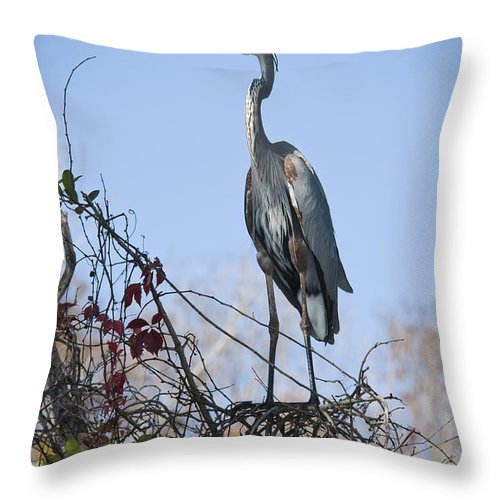 Great Blue Heron Throw Pillow featuring the photograph The Heron Perch by Chad Davis