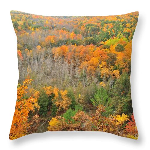 The High Rollaways Throw Pillow featuring the photograph The High Rollaways by Terri Gostola