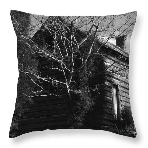 Cabins Throw Pillow featuring the photograph The Homestead by Richard Rizzo