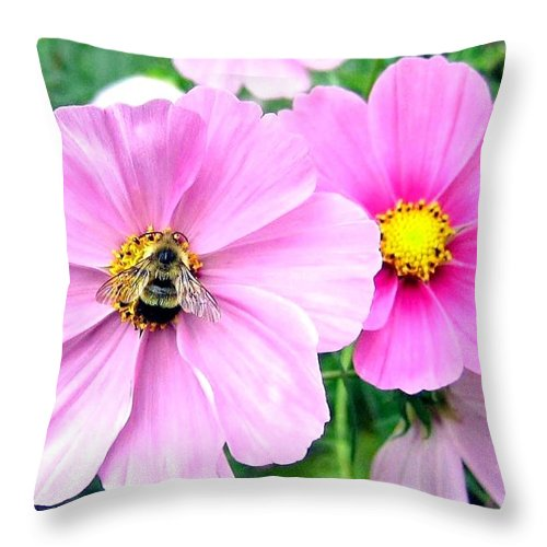 Bee Throw Pillow featuring the photograph The Honeymaker by Will Borden