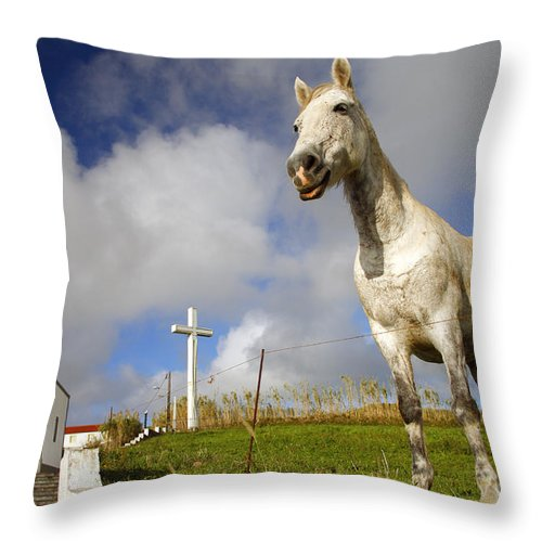 Portugal Throw Pillow featuring the photograph The Horse And The Chapel by Gaspar Avila
