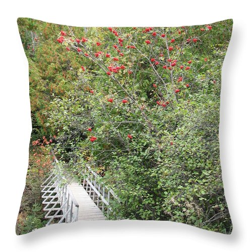 Bridge Throw Pillow featuring the photograph The Journey by Kelly Mezzapelle