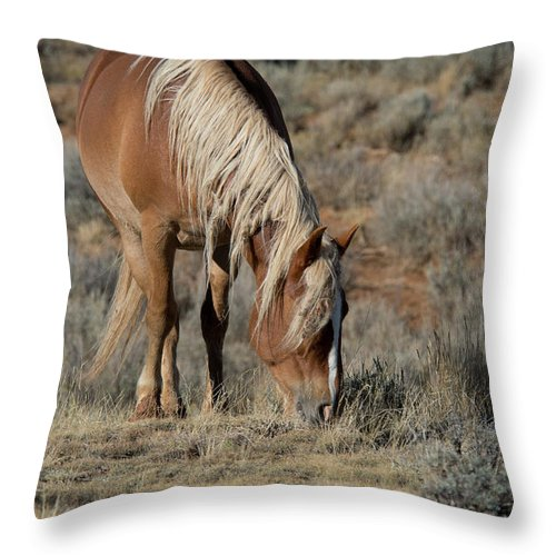 Cody Throw Pillow featuring the photograph The Joy of Nature by Frank Madia