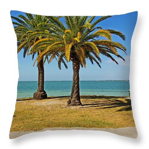 Sea Throw Pillow featuring the photograph The Joy Of Sea And Palms by Zal Latzkovich