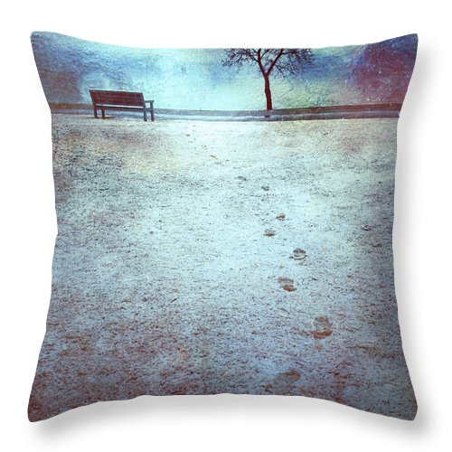 Bench Throw Pillow featuring the photograph The Last Snowfall by Tara Turner