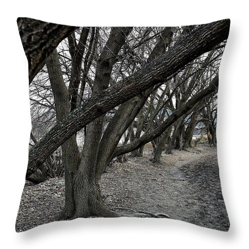 Trees Throw Pillow featuring the photograph The Leaning Boughs by Robert Rienzo