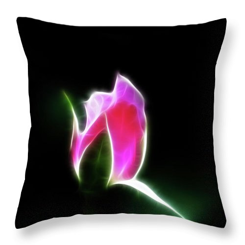 Rose Throw Pillow featuring the photograph The Light Of Heaven Shining Down by Lisa Stanley