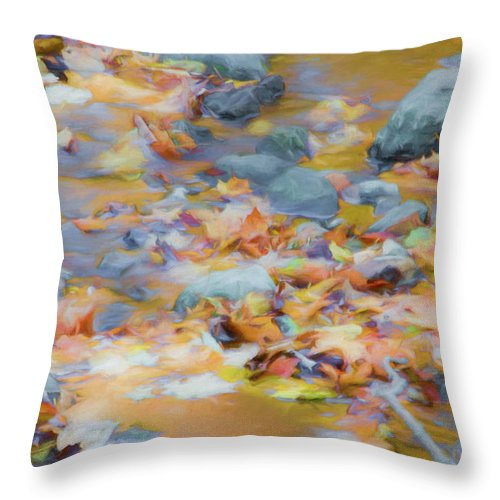 Abstracts Throw Pillow featuring the photograph The Lightness of Autumn by Marilyn Cornwell