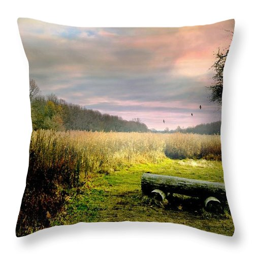 Landscape Throw Pillow featuring the photograph The Log Bench by Diana Angstadt