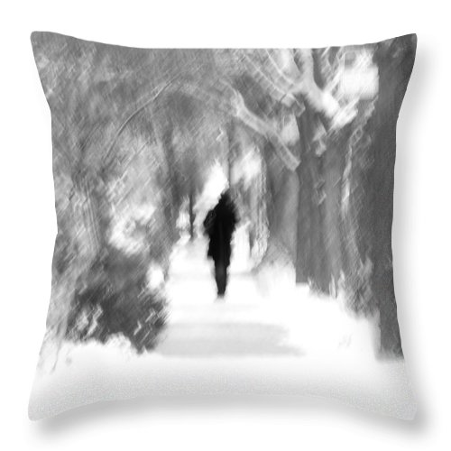 Blur Throw Pillow featuring the photograph The Long December by Dana DiPasquale