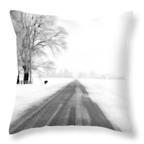 Road Throw Pillow featuring the photograph The Long Road by Cathy Beharriell