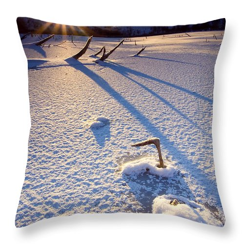 Sunrise Throw Pillow featuring the photograph The Long Shadows Of Winter by Mike Dawson
