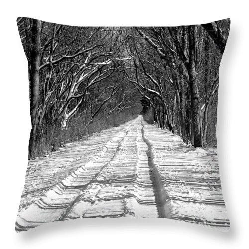 Throw Pillow featuring the photograph The Long Winter Walk by Jenny Gandert