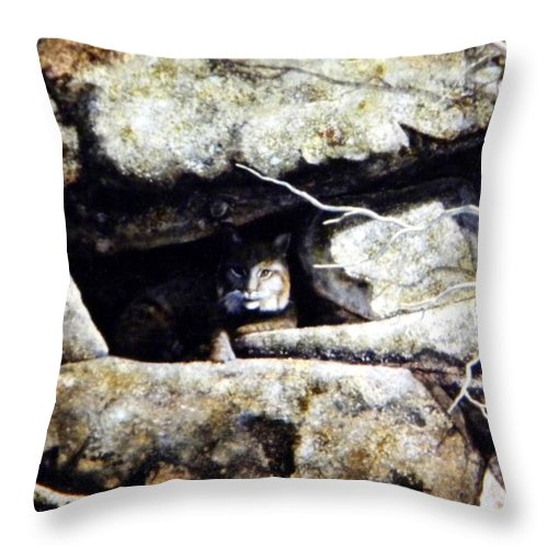 Wildlife Throw Pillow featuring the painting The Lookout Lynx by Frank Wilson