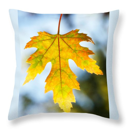 Maple Throw Pillow featuring the photograph The Maple Leaf by Marilyn Hunt