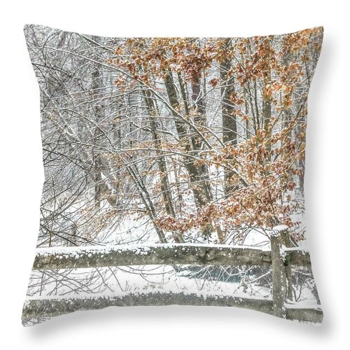 Winter Throw Pillow featuring the photograph The Metro Park by Dennis R Bean