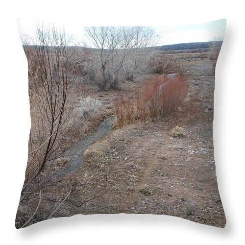 River Throw Pillow featuring the photograph The Mighty Santa Fe River by Rob Hans