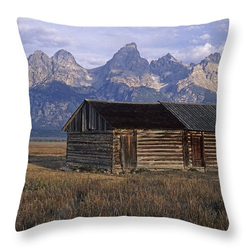 Scenic Throw Pillow featuring the photograph The Molton Homestead by Doug Davidson