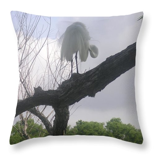 Nature Throw Pillow featuring the photograph The Morning Constitutional by Lucyna A M Green