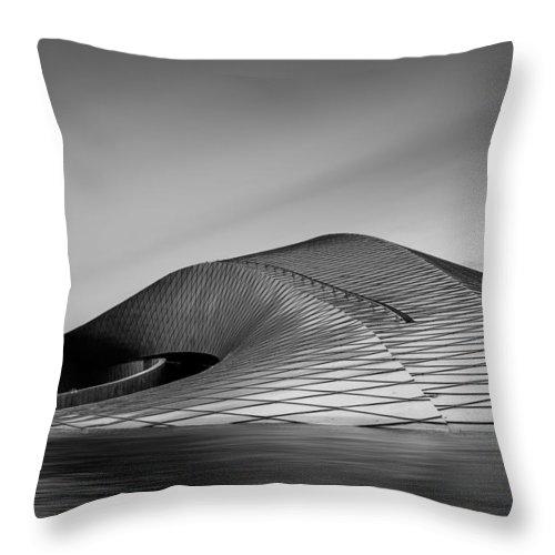 Copenhagen Throw Pillow featuring the photograph The Mother Ship by Catalin Tibuleac